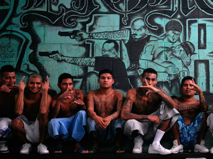 inmigrantes tren la bestia mafias